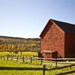 Popular - Barn owners reap heat pump benefits