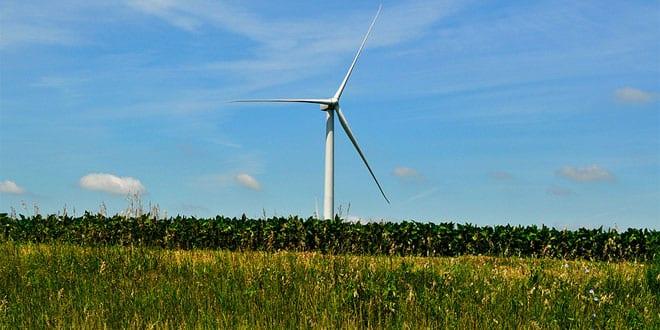 Popular - Government heralds energy efficiency revolution