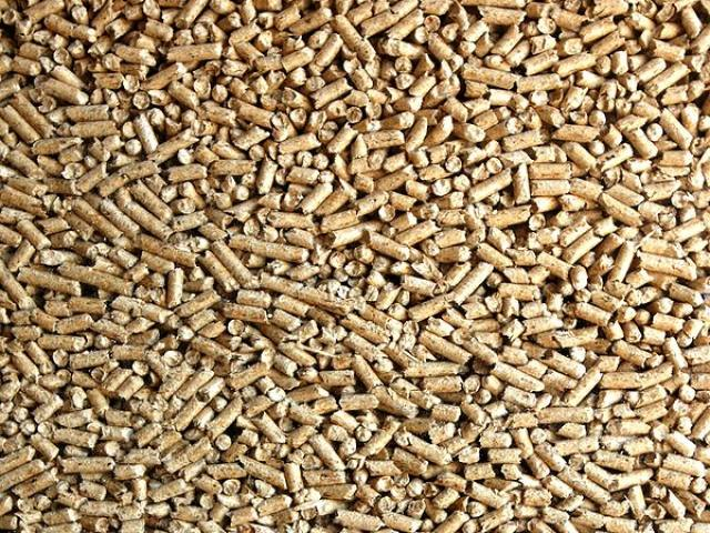 New biomass sustainability criteria to provide certainty for investors to 2027