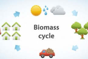 Introduction to biomass boilers