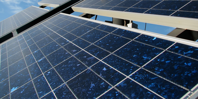 Solar PV thriving