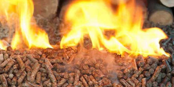 Biomass has taken a hit for being the popular choice