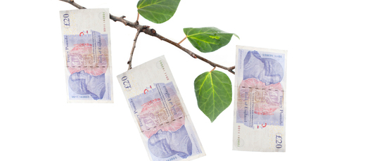 Green Deal Home Improvement Fund launches