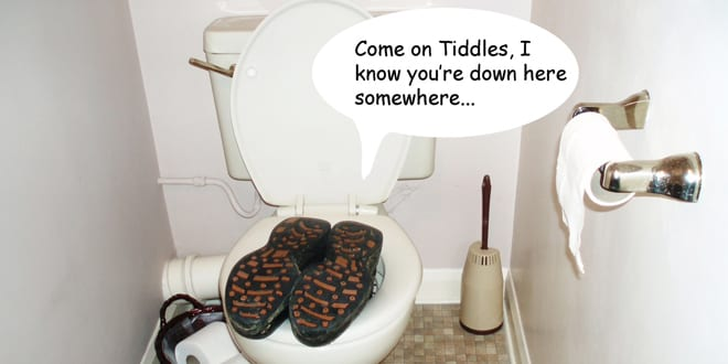 Popular - Let's celebrate World Toilet Day