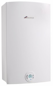 Bosch Commercial instantaneous water heater