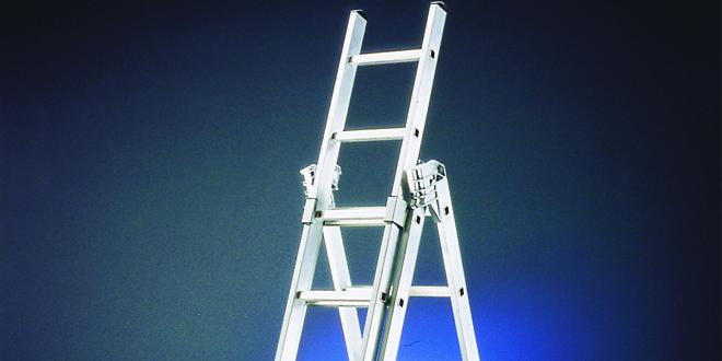 Ladder web