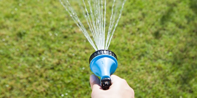 """Popular - Hosepipes could cause a """"serious health risk to water quality"""""""