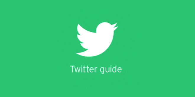 twitter guide web