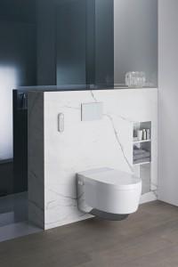 geberit shower toilet