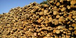 Why quality woodfuel is important for installers and their customers