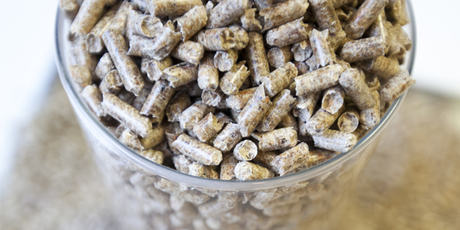biomasspelletsweb