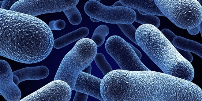 Popular - CIPHE warns about growing threat of Legionnaires' disease
