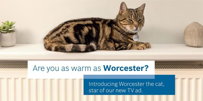"Popular - Worcester launches new ""Worcester the cat"" consumer advertising campaign"