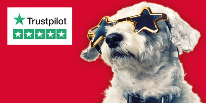 Popular - Win a stay in a five star hotel to celebrate Glow-worm's five star Trustpilot rating