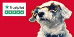 Win a stay in a five star hotel to celebrate Glow-worm's five star Trustpilot rating