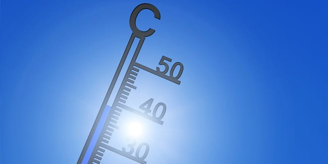 Popular - Hot weather working – when does it become too much?