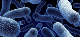 Installers urged to be vigilant about Legionella after year-on-year rise in Legionnaires' disease